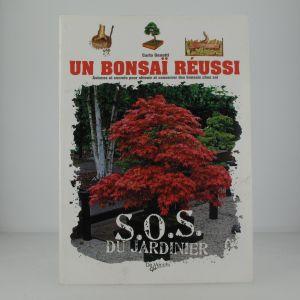 Un bonsaî réussi